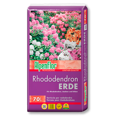 Alpenflor Rhododendronerde Beitragsbild